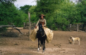 El Chaco Americano 75