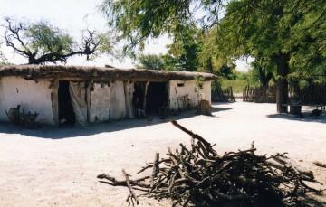 El Chaco Americano 86