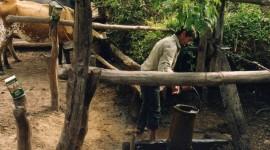 Manejo De Agua Y Bosque 11