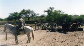 Manejo De Agua Y Bosque 15