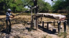 Manejo De Agua Y Bosque 8